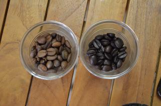 Diferencia de color entre un tostado claro y un tostado oscuro