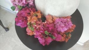 Oler las flores regularmente nos ayuda a entender los perfumes florales en el café.