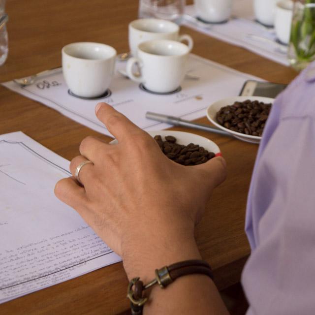 Gente de la Isla dominican coffee cafe dominicano